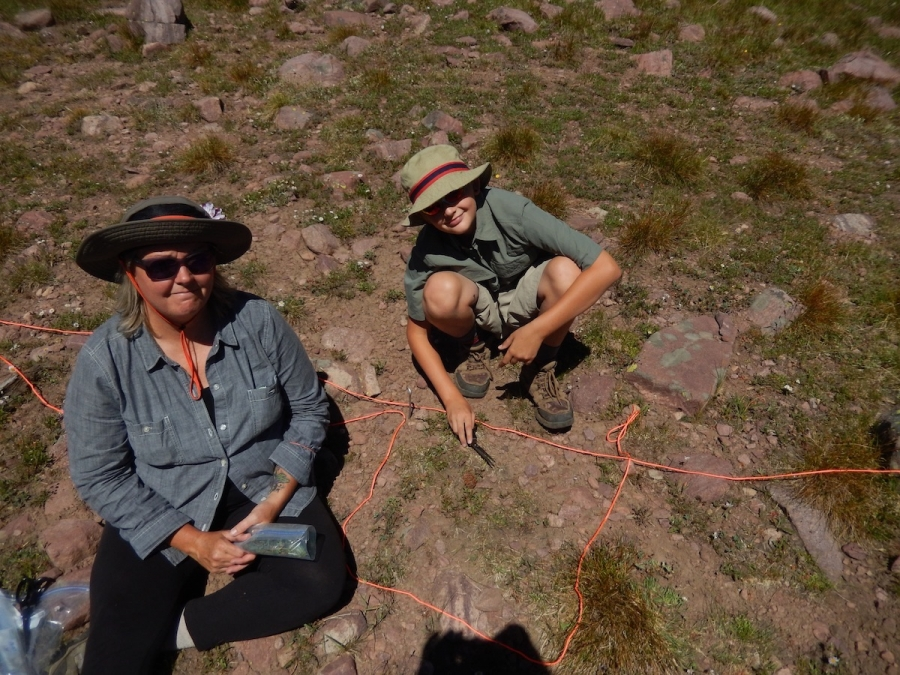 Y2U staff and volunteers surveying overgrazing in the Uinta Mountains