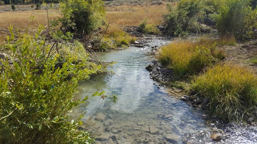 Paris Creek Restoration of Bonneville Cutthroat Trout