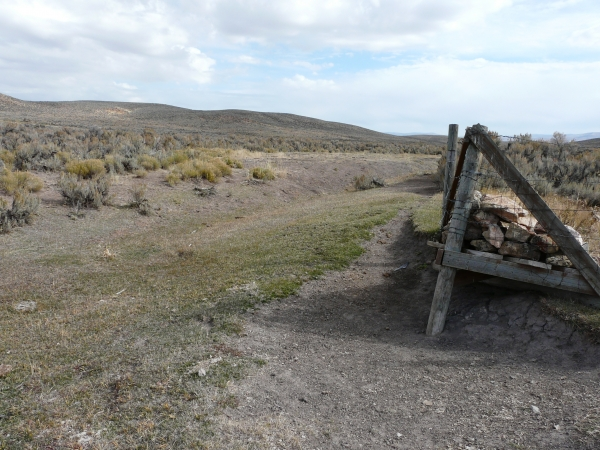 Riparian meadow grazed to point no habitat for sage grouse remains.||||