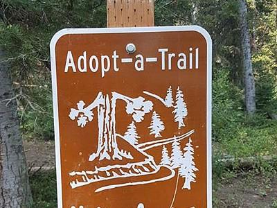 Limber Pine Trail
